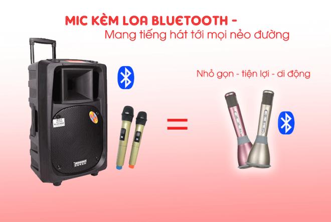 mic-kem-loa-hat-karaoke-3-trong-9